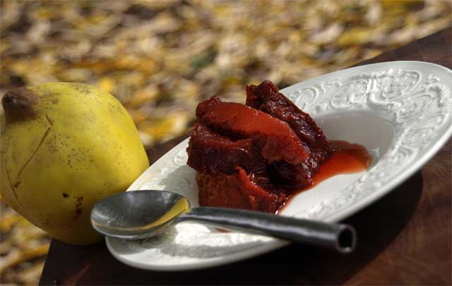 stewed quince