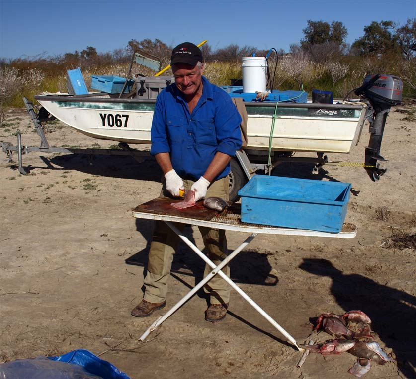 Yours truly filleting Yellow Belly
